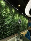 网际网咖植物墙