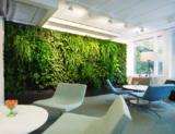 休息室植物墙